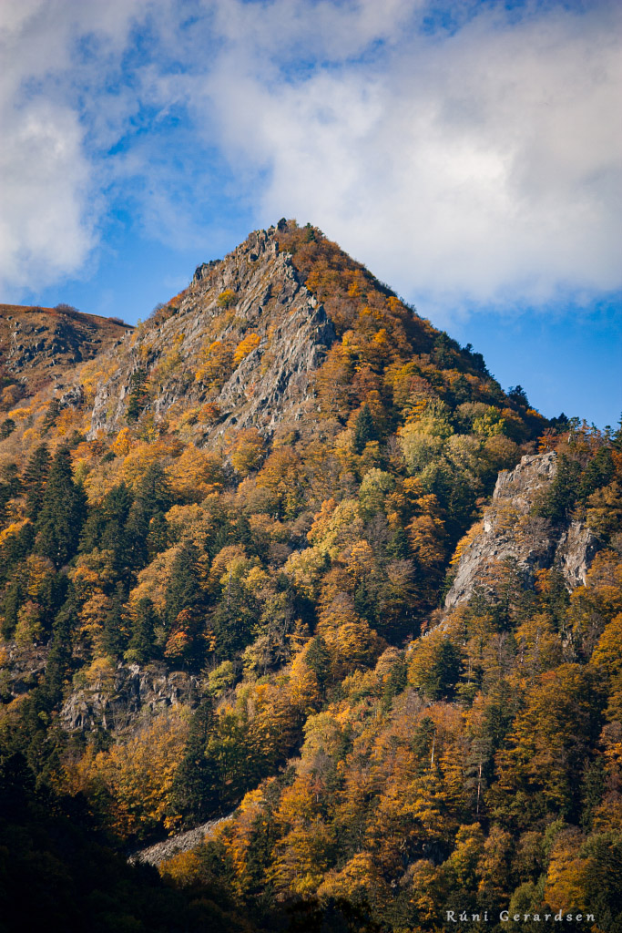 a rocky mountain with some orange trees on it